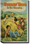 The Bobbsey Twins in the Country | Laura Lee Hope