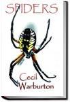 Spiders | Cecil Warburton