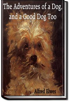 The Adventures of a Dog, and a Good Dog Too | Alfred Elwes