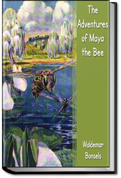 The Adventures of Maya the Bee | Waldemar Bonsels