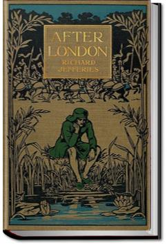 After London, or Wild England | Richard Jefferies