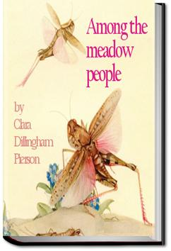 Among the Meadow People | Clara Dillingham Pierson