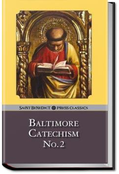 The baltimore catechism no 2 audiobook and ebook all you can religion fandeluxe Images