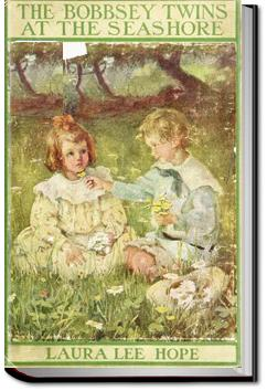 The Bobbsey Twins at the Seashore | Laura Lee Hope