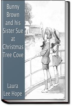 Bunny Brown and His Sister Sue at Christmas Tree Cove | Laura Lee Hope