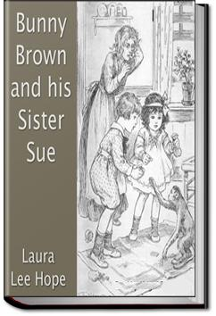 Bunny Brown and his Sister Sue | Laura Lee Hope