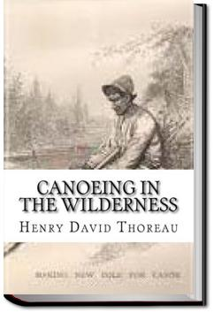 Canoeing in the wilderness | Henry David Thoreau