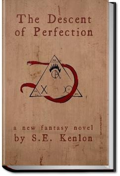 The Descent of Perfection   Seth Kenlon