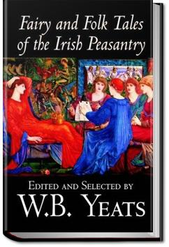 Fairy and Folk Tales of the Irish Peasantry | W. B. Yeats