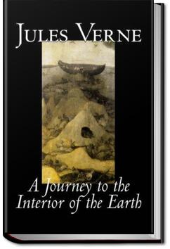 A Journey to the Interior of the Earth | Jules Verne