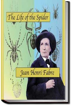 The Life of the Spider | Jean-Henri Fabre