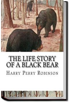 The Life Story of a Black Bear | Harry Perry Robinson