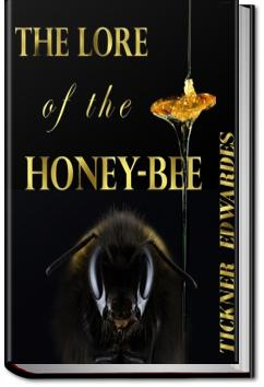 The Lore of the Honey-Bee | Tickner Edwardes