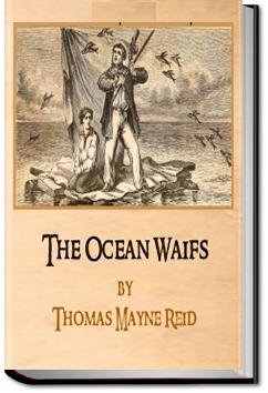 The Ocean Waifs | Mayne Reid