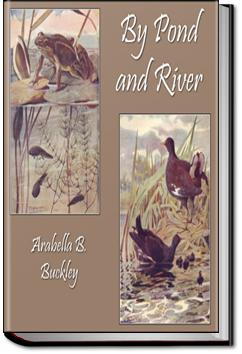 By Pond and River | Arabella B. Buckley