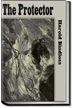 The Protector | Harold Bindloss