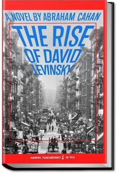 rise of david levinsky
