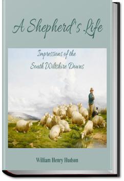 A Shepherd's Life | W. H. Hudson
