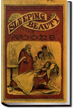 The Sleeping Beauty and Other Fairy Tales | Charles Perrault