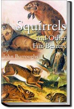 Squirrels and Other Fur-Bearers | John Burroughs