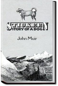Stickeen | John Muir