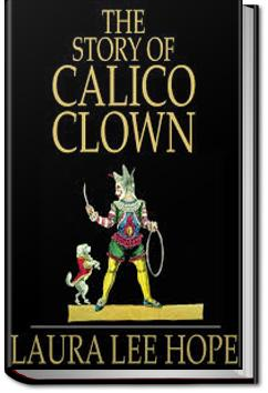 The Story of Calico Clown | Laura Lee Hope