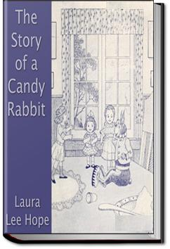 The Story of a Candy Rabbit | Laura Lee Hope