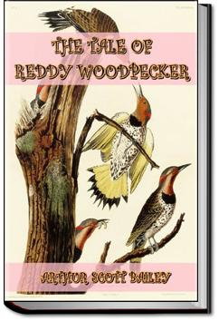 The Tale of Reddy Woodpecker | Arthur Scott Bailey