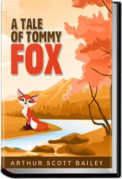 The Tale of Tommy Fox | Arthur Scott Bailey