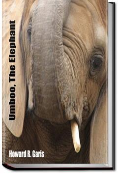 Umboo, the Elephant | Howard Roger Garis