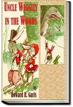 Uncle Wiggily in the Woods | Howard Roger Garis