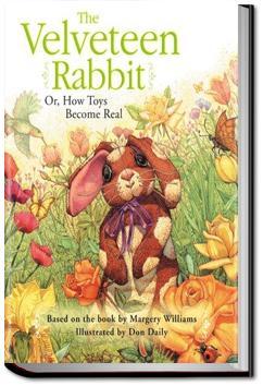 The Velveteen Rabbit | Margery Williams Bianco