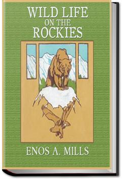 Wild Life on the Rockies | Enos Abijah Mills