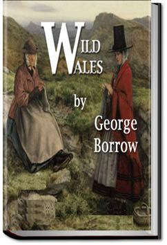 Wild Wales | George Henry Borrow