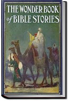 The Wonder Book of Bible Stories |