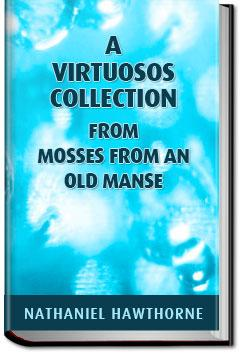 A Virtuoso's Collection  | Nathaniel Hawthorne