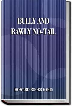 Bully and Bawly No-Tail | Howard Roger Garis